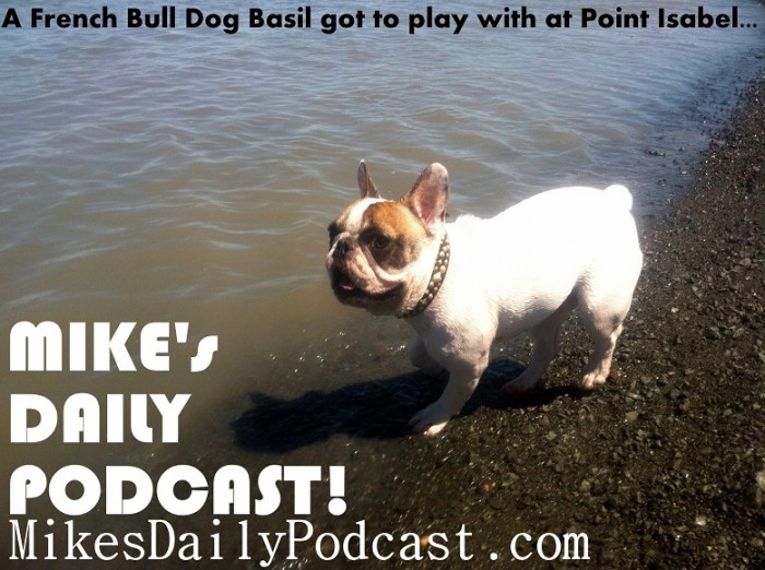 MIKEs+DAILY+PODCAST+6+25+2013+French+Bull+Dog+Point+Isabel+Richmond