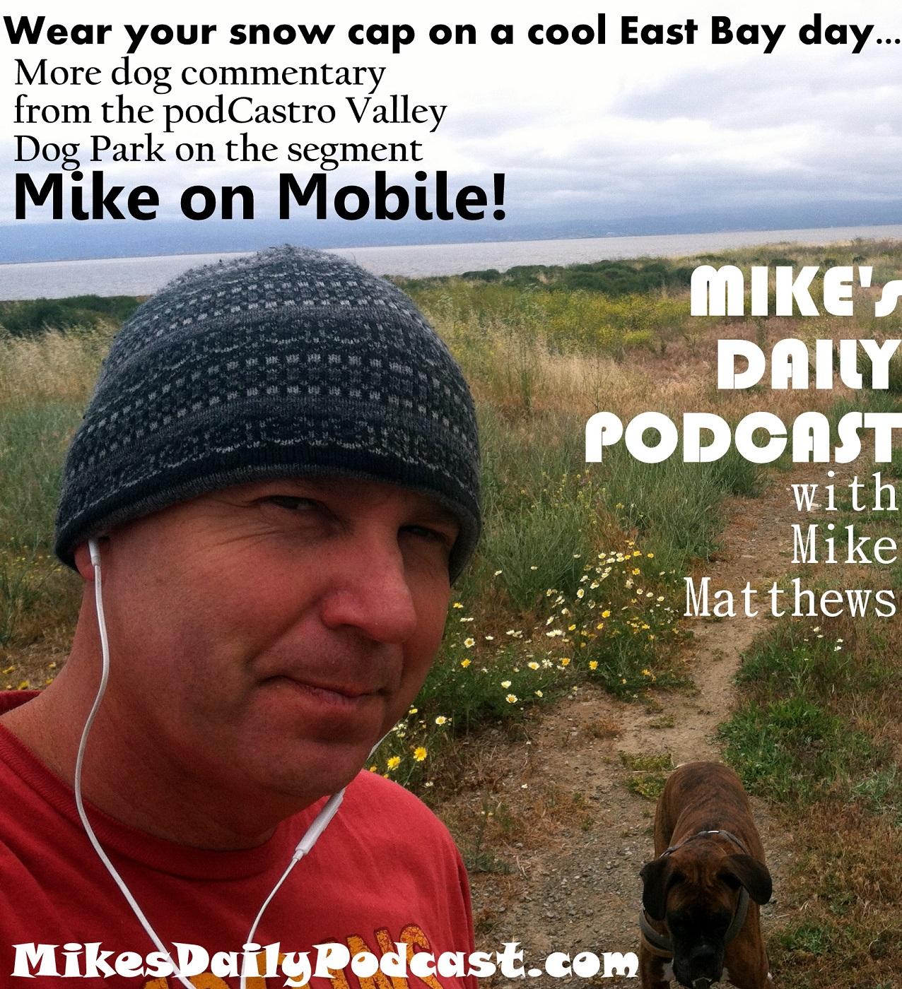 MIKEs DAILY PODCAST 7-9-15 Hayward Regional Shoreline CV Dog Park