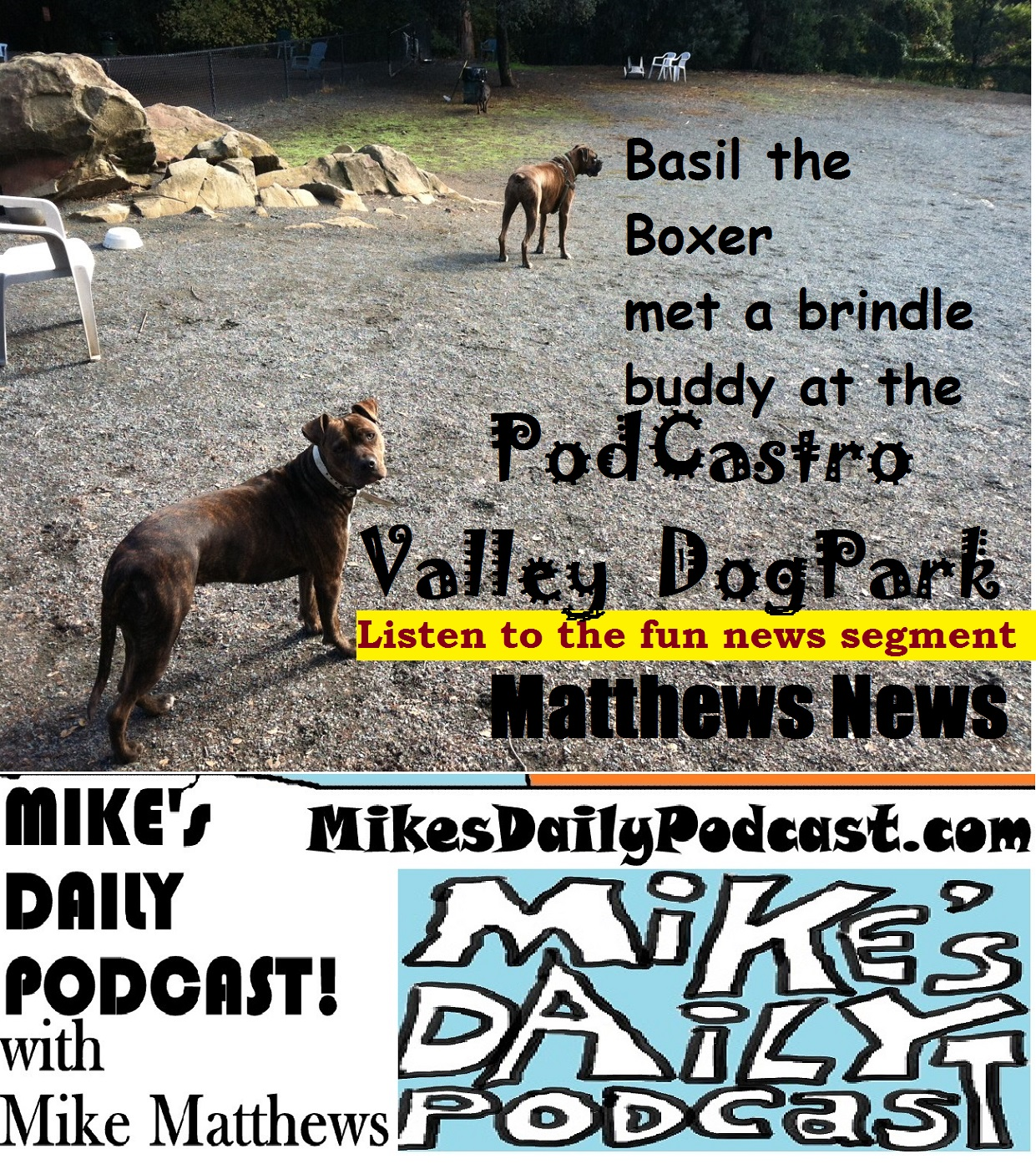 MIKEs DAILY PODCAST 967 Castro Valley Dog Park