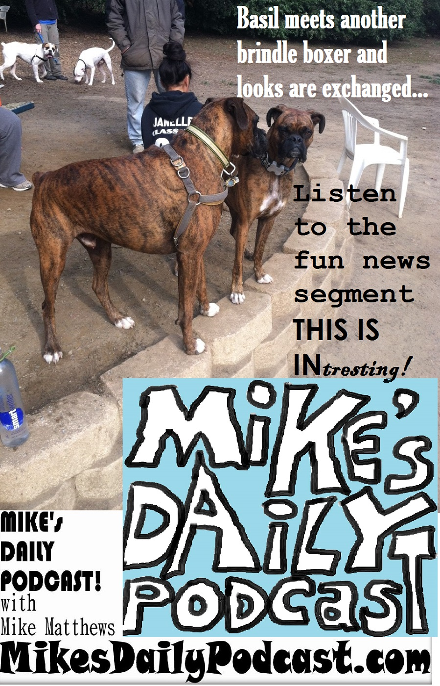 bay area – Page 155 – MIKE's DAILY PODCAST