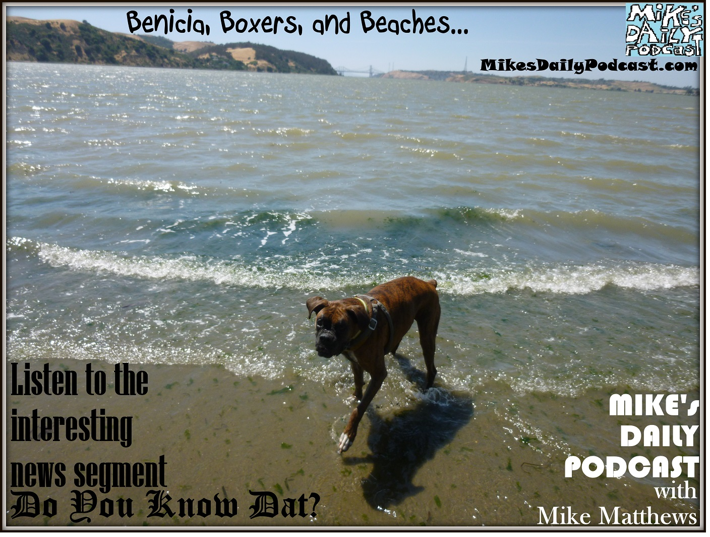 MIKEs DAILY PODCAST 1005 Benicia beach boxers