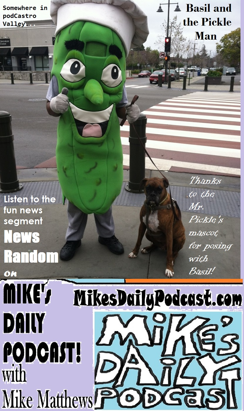 MIKEs DAILY PODCAST 1011 Mr Pickles Castro Valley boxer