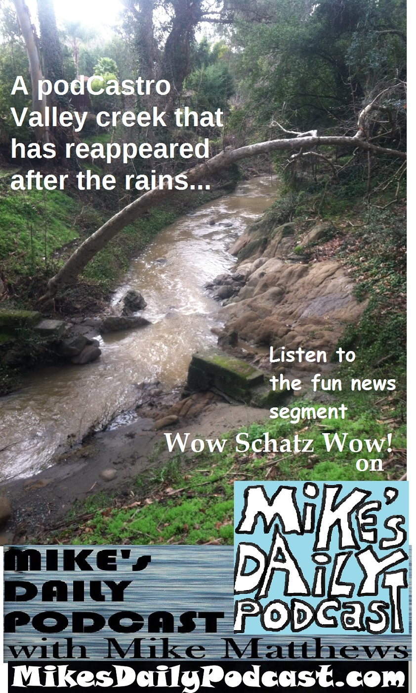 MIKEs DAILY PODCAST 1016 Earl Warren Park Creek
