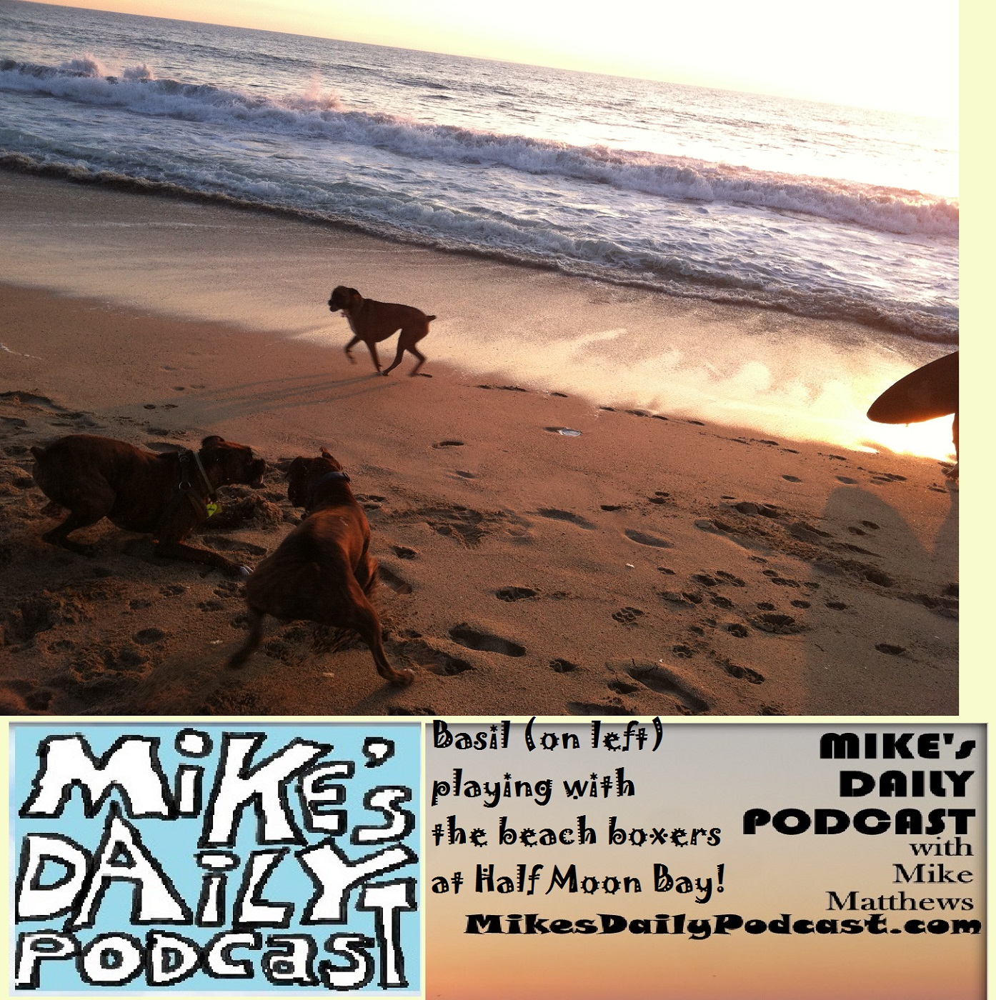 MIKEs DAILY PODCAST 1118 Half Moon Bay Boxers