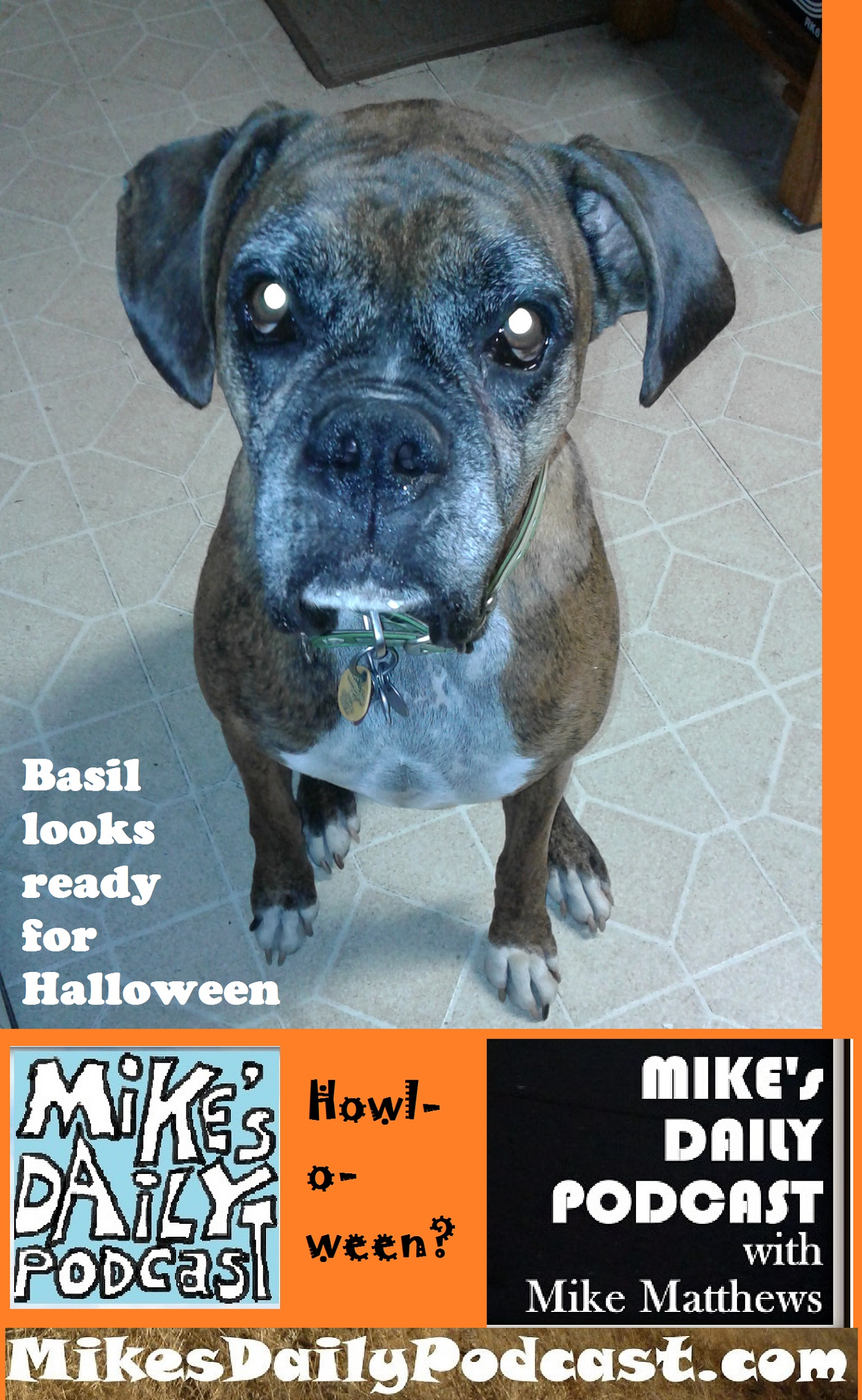 mikes-daily-podcast-1194-basil-howlloween