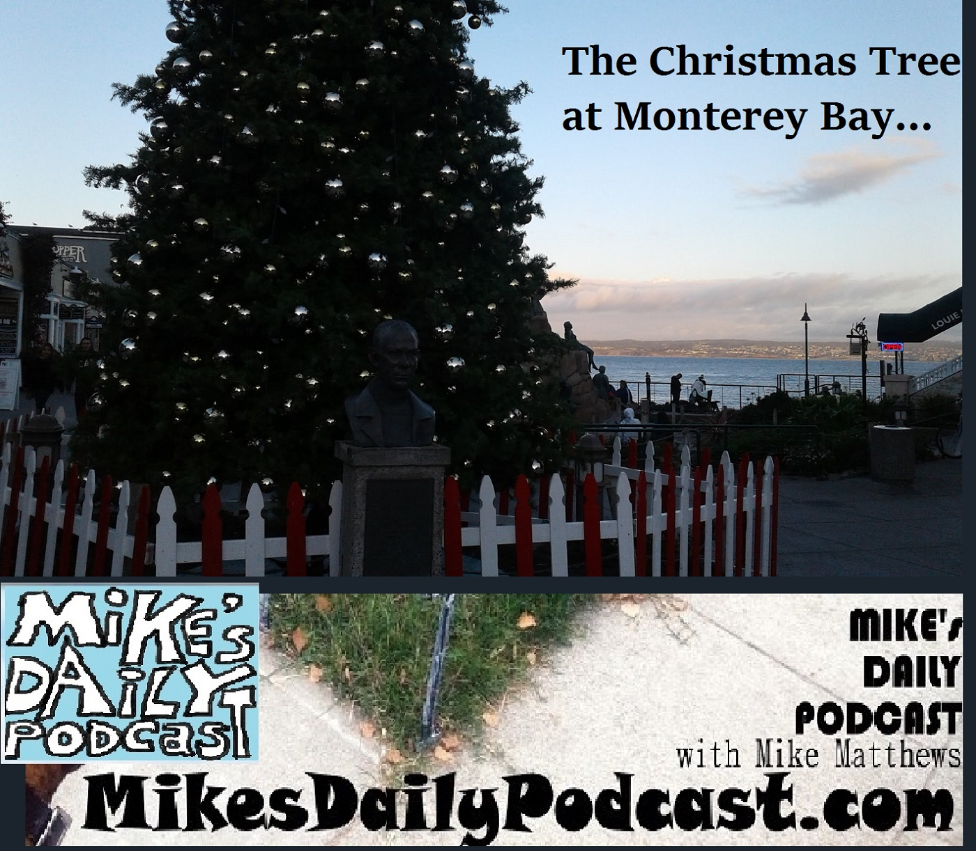 mikes-daily-podcast-1225-monterey-bay-christmas-tree