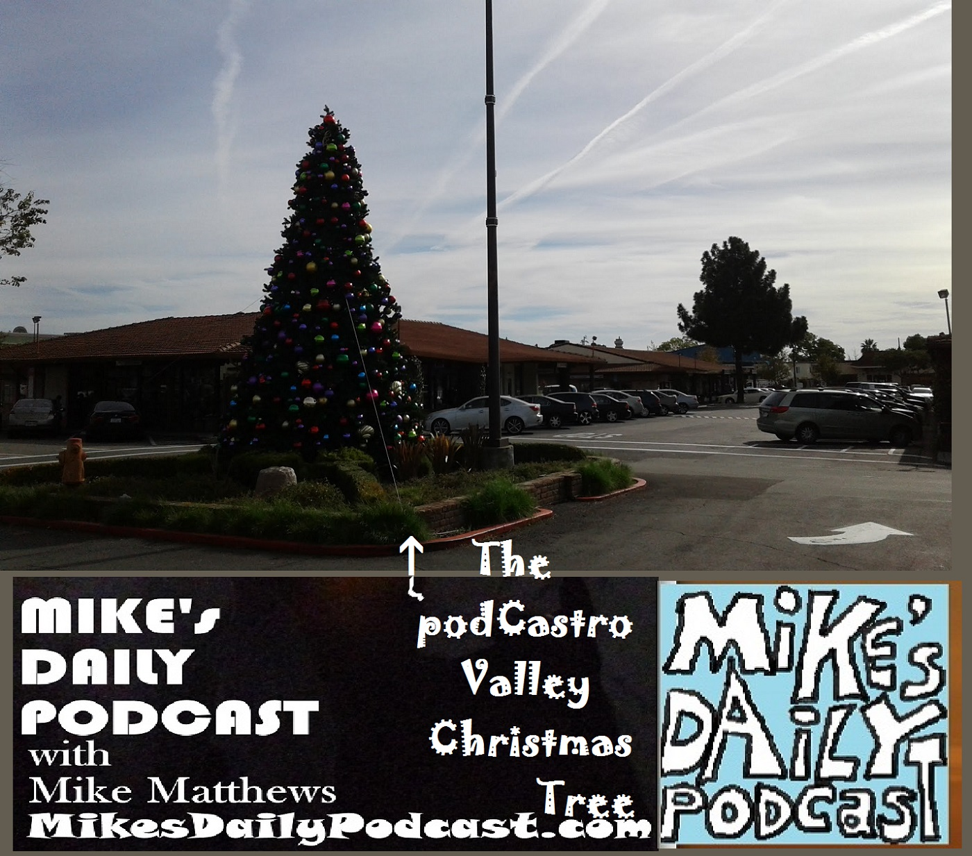 mikes-daily-podcast-1227-christmas-tree-castro-valley